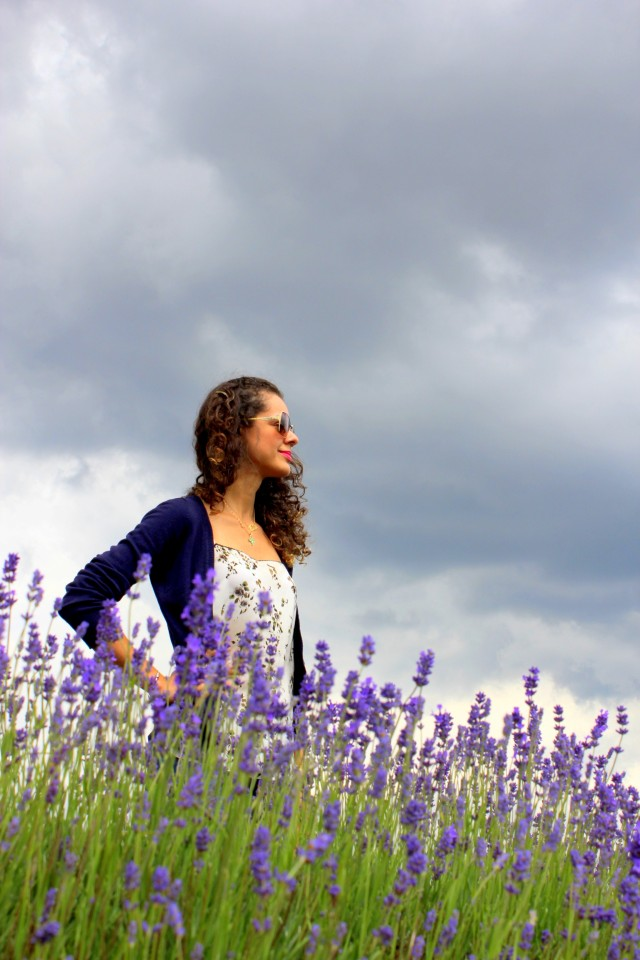 Mayfield Lavender Farm12