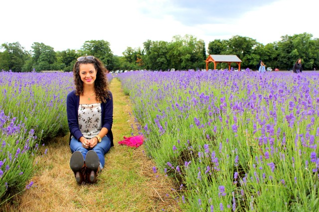 Mayfield Lavender Farm8